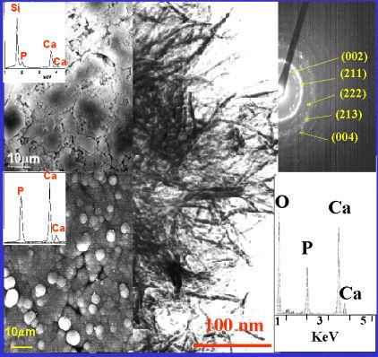 Fig. 8: Micrografías de barrido y de transmisión de la nueva capa formada sobre el vidrio. Diagrama de difracción de electrones correspondientes. EDS del vidrio y de la capa formada.