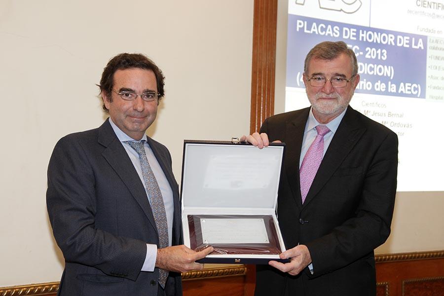 AEC PEDRO CAÑUELO 2013