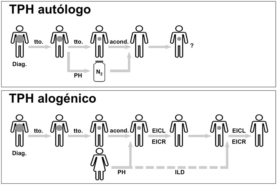 TPH 01 02 Trasplantes_hematopoyeticos-1
