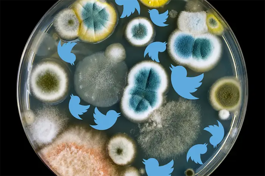 AEC Twitter para la comunicacion cientifica main